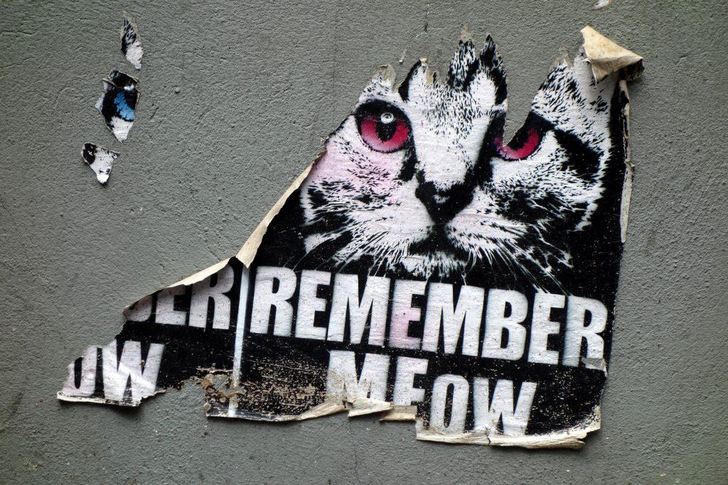 Alternative Street Art Tours Cologne- MEOW
