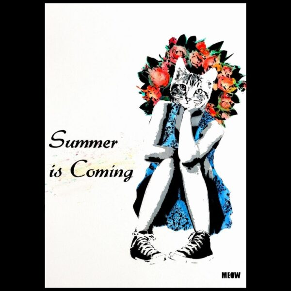 Meow Summer is Coming
